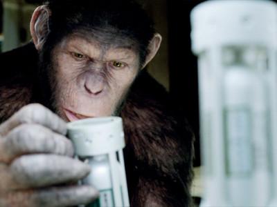Monos Inteligentes Exterior