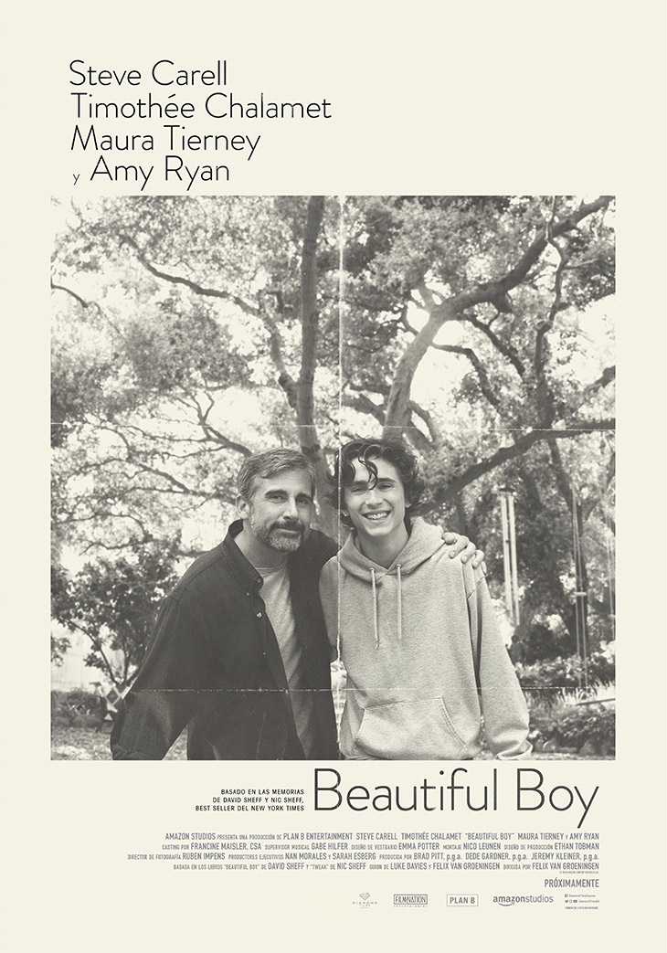 Póster de Beautiful Boy